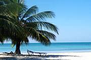 Urlaub unter Palmen wird im kommenden Jahr erschwinglicher