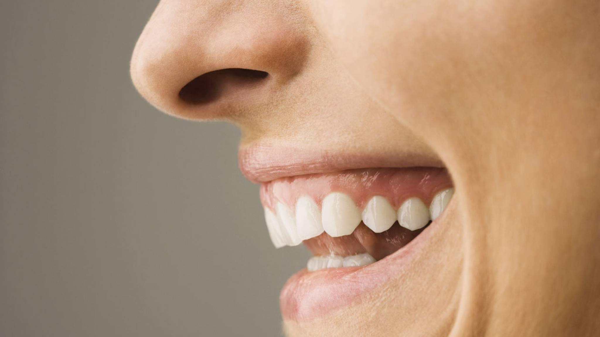 0a3e32c36d3963 Mund und Zähne  Ein fast perfektes System