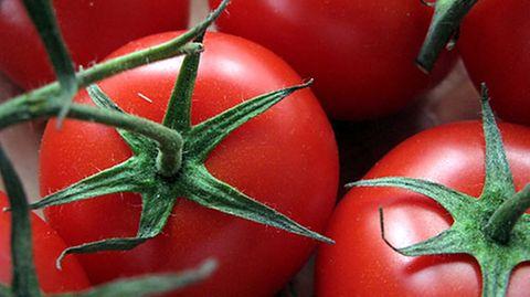 Mächtig gesund durch Vitamine und sekundäre Pflanzenstoffe: die Tomate