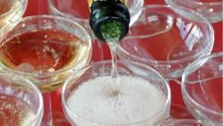 Sekt trinken mit den Reichen und Schönen: Mit allerlei Tricks schaffte es ein älteres Pärchen auf die Promi-Partys von Berlin