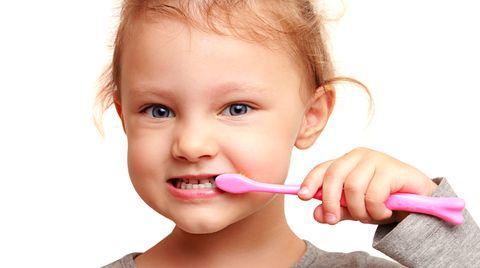 Früh übt sich: Milliarden Mikroorganismen leben im Zahnbelag - und müssen durch Putzen entfernt werden