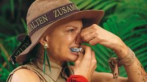 Hoden-Happen im Dschungel
