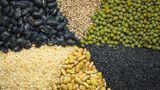 Essen Sie einmal pro Woche Hülsenfrüchte: Linsen, Erbsen oder Bohnen enthalten viel Mineralstoffe und Vitamine sowie große Mengen an Ballaststoffen. Die darin enthaltenen Eiweiße passen gut zu Eiweiß aus Getreide oder Fleisch.
