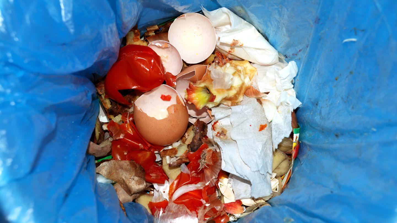 82 Kilogramm Lebensmittel, etwa zwei vollgepackte Einkaufswagen im Wert von rund 235 Euro pro Jahr, schmeißt jeder von uns weg