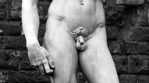 die untersuchung weiblich mannlich penis