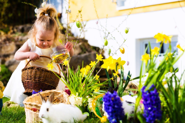 Osterhase und Eier suchen, wenn dann noch die Sonne scheint, ist das Kinderglück perfekt