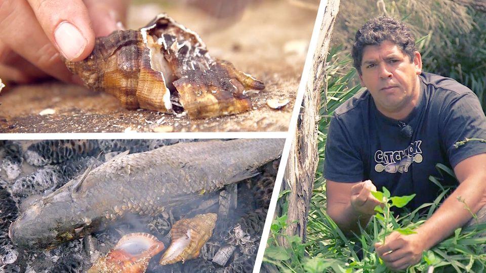 Aboriginal Food: Bush Food auf dem Teller - Geschmacksexplosionen im Mund