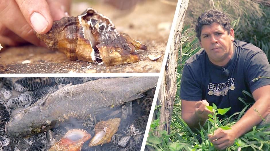Kulinarisches Australien: Wie sich die Aborigines ernährten