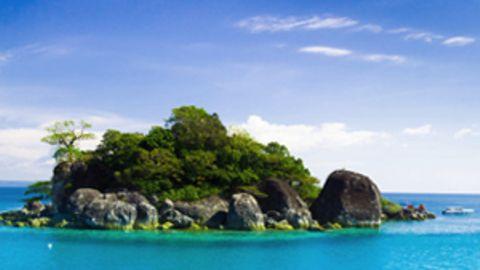 Eine kleine Insel mit vielen Palmen im blauen Wasser.