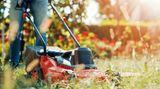 Gehört ein Garten zur Mietwohnung, ist der Mieter auch für dessen Pflege verantwortlich. Wer Büsche schneiden muss oder den Rasen mähen soll, wird häufig im Mietvertrag geregelt. Braucht der Mieter Geräte für die Arbeit, muss er sie selbst anschaffen.   Lässt der Mieter den Garten verwildern, kann der Vermieter einen Profi für den Job anheuern. Die Kosten für die professionelle Gartenpflege kann dann auf die Mieter umgelegt werden.