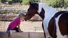 Mama, ich bin ein Pferd!
