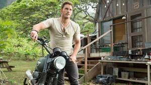 """Chris Pratt als harter, aber schlauer Ex-Soldat in """"Jurassic World"""""""
