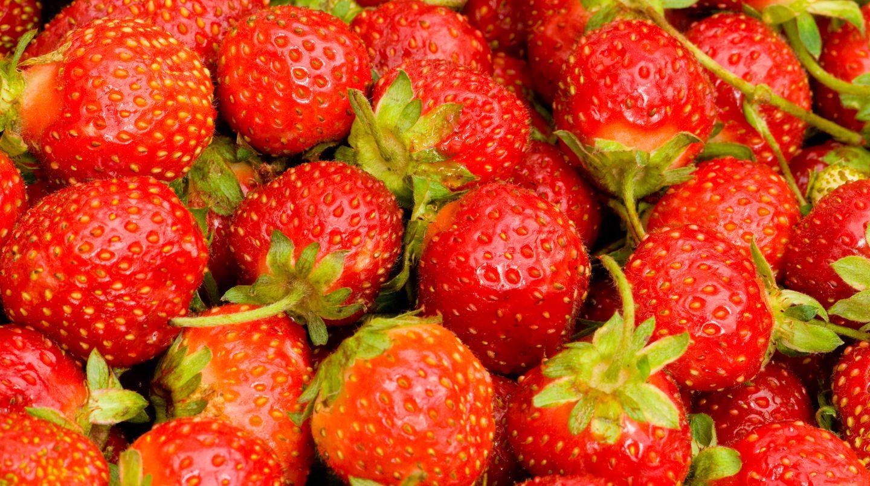 Rund 25.000 Kilogramm Erdbeeren werden aus dem Handel genommen