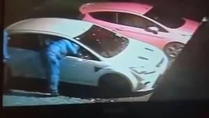 Auf der Überwachungskamera ist der Diebstahl festgehalten.