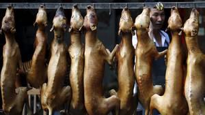 Geschlachtete Hunde hängen bereit zum Verkauf am Haken