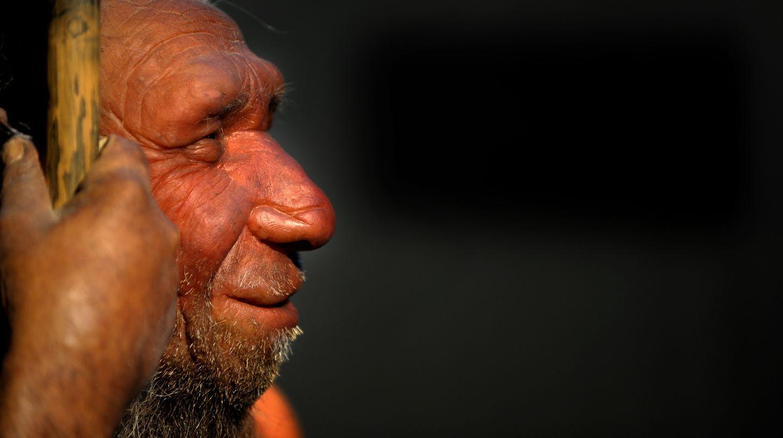 Neandertaler und Homo sapiens hatten Sex miteinander, zeigt die DNA eines Kiefers