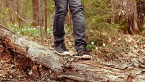 Ein Mann balanciert auf einem Baum