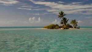 Das Bild zeigt eine Mini-Trauminsel der Fidschis