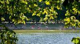 Abkühlung im Grünen - und das mitten in der Großstadt: Das gönnen sich aufgeheizte Hanseaten im Stadtparksee im Hamburger Stadtteil Winterhude. Der ist mit einer Wasserfläche von 107 mal 138 Metern das größte Freibad in der Stadt und bietet neben großzügigen Liegewiesen auch einen kleinen Sandstrand und einen Biergarten.