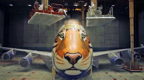 Boeing 747 wird zum Tiger