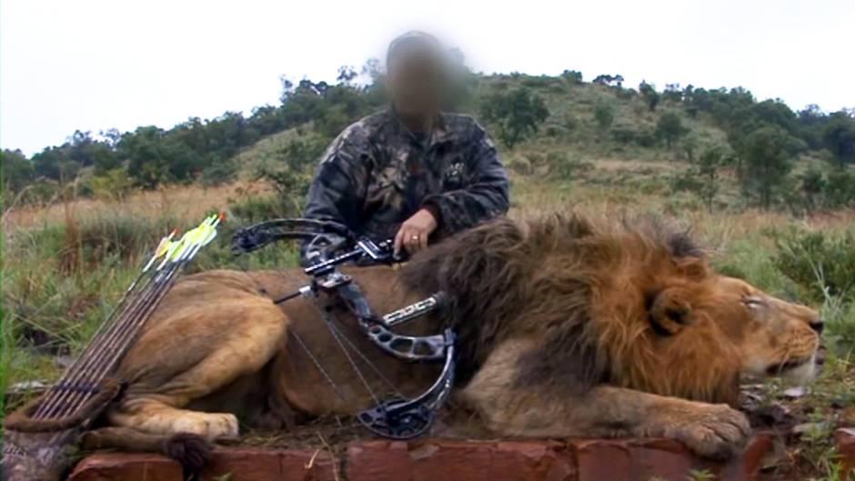 """Ein Hobbyjäger posiert mit einem beim """"Canned Hunting"""" erlegten Löwenmännchen."""