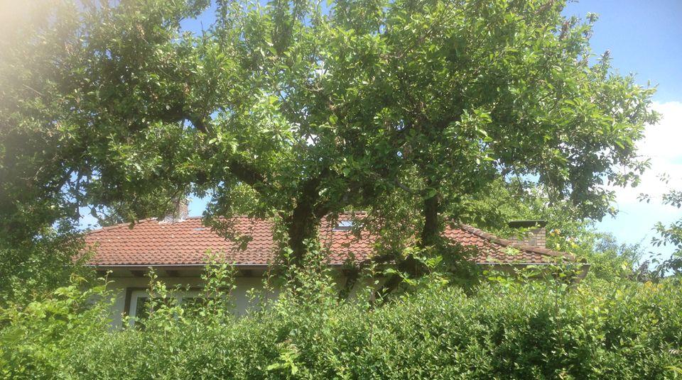 In diesem Haus lebte der Angeklagte Christian K. zusammen mit seiner Frau