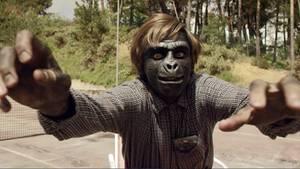 Ob Skateboard fahren, tanzen oder Zeitung lesen. Dieser Affe kann alles.