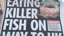 Der Hoden-fressende Killerfisch und andere Gefahren