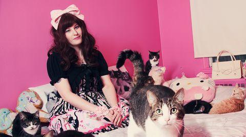 Verrückt nach Katzen: Wie Menschen mit Katzen zusammenleben