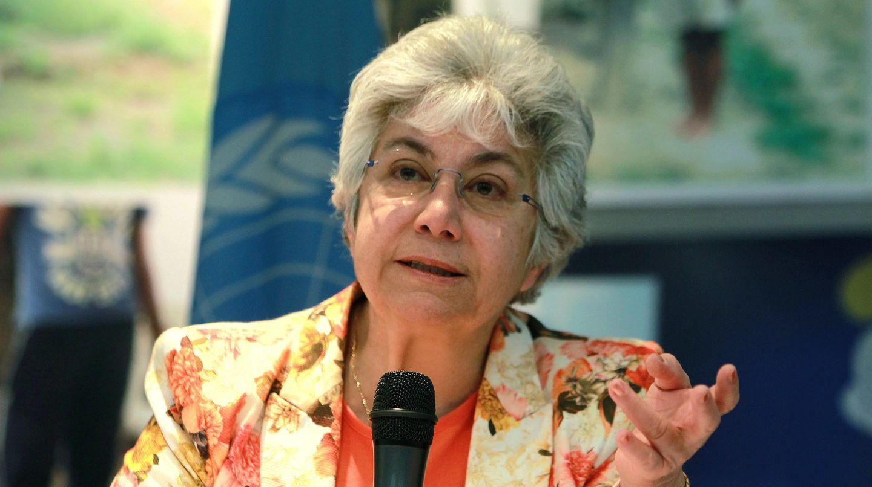 Die stellvertretende UN-Menschenrechtskommissarin Flavia Pansieri tritt zurück