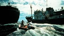Greenpeace-Aktivisten kämpfen auf dem Schlauchboot gegen Walfänger.