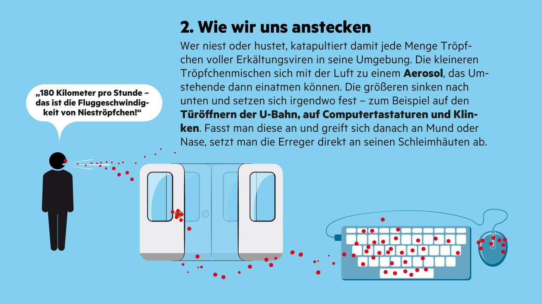 """Infografik """"Sehen und Verstehen"""": Erkältung: Wie sie entsteht und was uns schützt"""