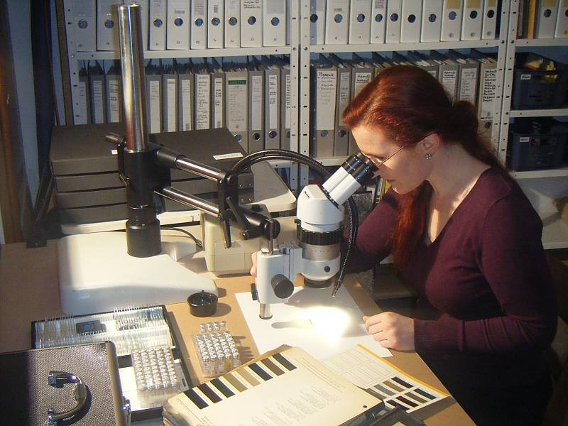 Durch das Mikroskop offenbaren Lacke und Materialien ihre Geheimnisse