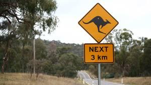 Ein Schild mit einem Känguru warnt in Australien vor den Beuteltieren, die die Straße überqueren