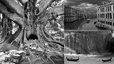 """""""Surreal Dreams"""": Alpträume in Schwarz und Weiß"""