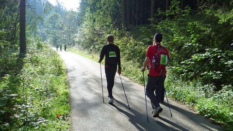 Wanderer im Harz beim Trailwalker