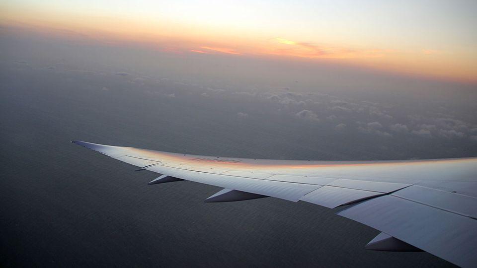 Follow Me: Geschwungener Flügel: Die Boeing 787 hat eine Sapnnweite von 56,7 Metern © Jannis Frech