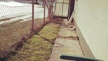 So sah mein kleines Gartenstück im vergangenen Frühjahr Mitte März aus. Hier durfte ich mich entfalten.