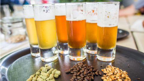 So viel trinken wir gerade: Eine Echtzeitgrafik zum Tag des Deutschen Bieres