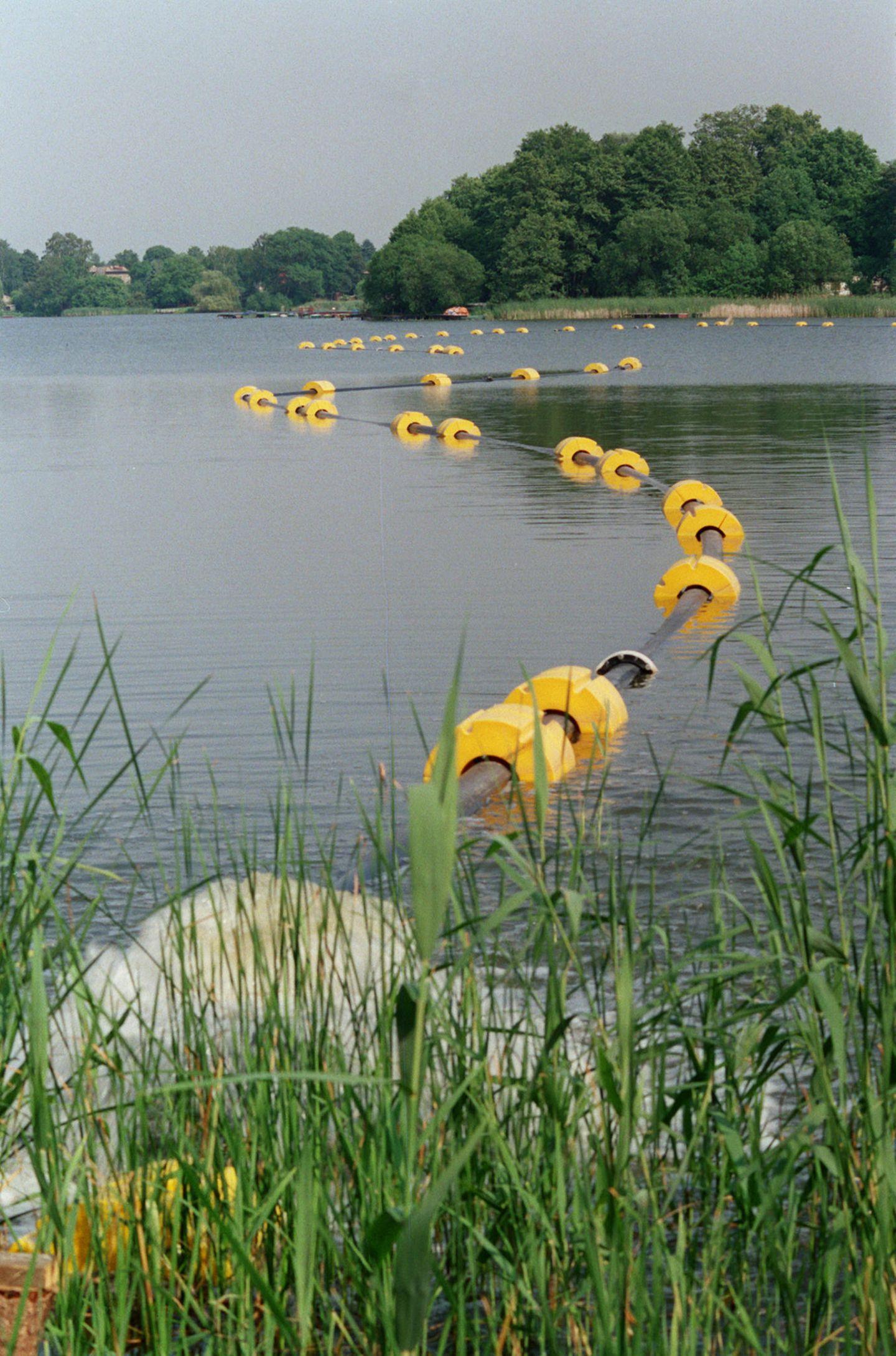 Der Falkenhagener See