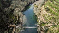 Hängebrücke des Paiva Walkways von oben