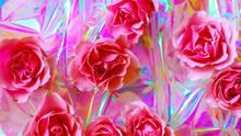 Partnerschaft: Das erste »Ich liebe dich«. Rosafarbene Rosen liegen auf einer Folie, die buntes Licht reflektiert.