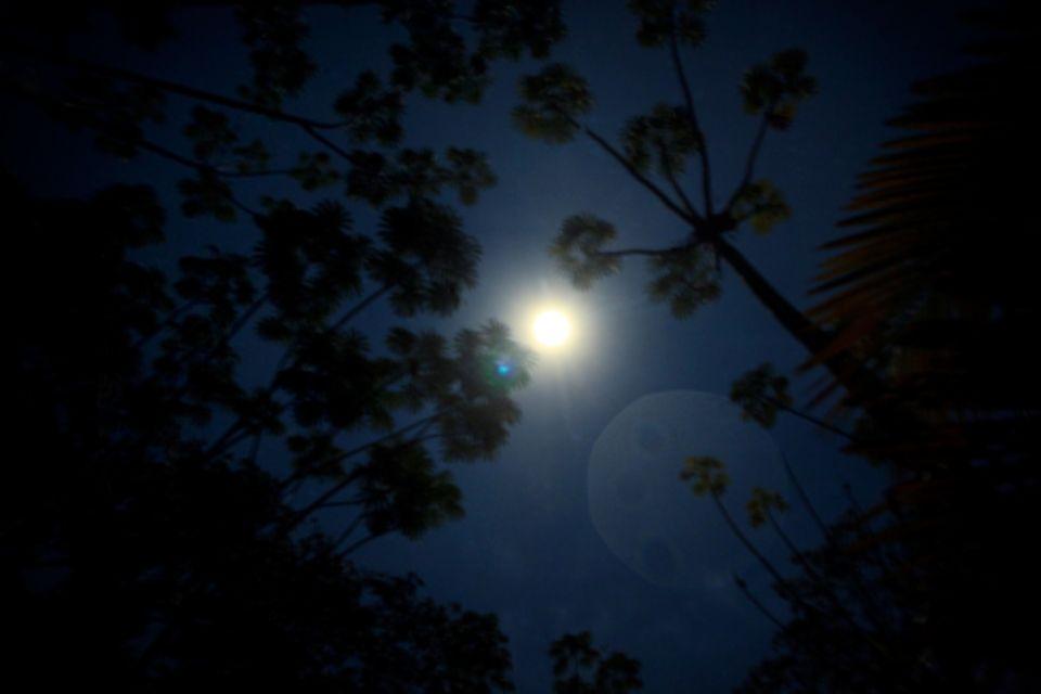 Zuhause: Hundert Sachen, die man gesehen haben muss: Auf der Liste des Autors steht seit Neuestem der Amazonas bei Mondlicht ganz oben.