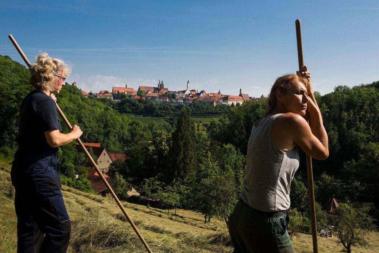 Jakobswege in Deutschland: Blick auf die mittelalterliche Stadt Rothenburg ob der Tauber.