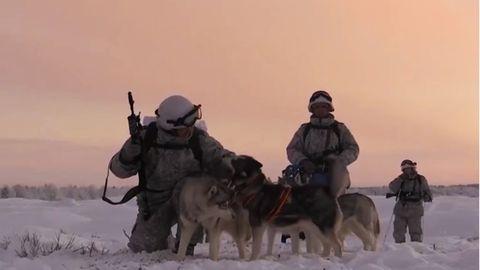 Die russischen Soldaten proben den Einsatz unter extremen Bedingungen: Wenn Motoren in der Kälte versagen, laufen Schlittenhunde weiter.