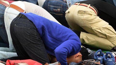 Muslime beim Gebet (Symbolbild)