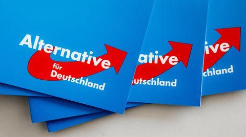 Die Alternative für Deutschland (AfD)