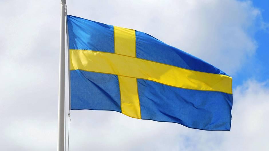 Schweden, Auswärtiges Amt, AfD