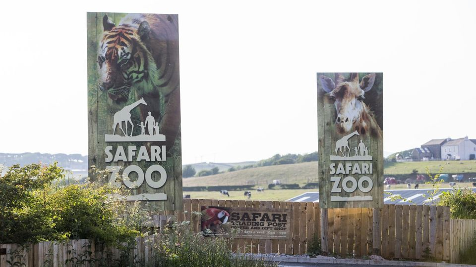Dem South Lakes Safari Zoo in England droht die Schließung