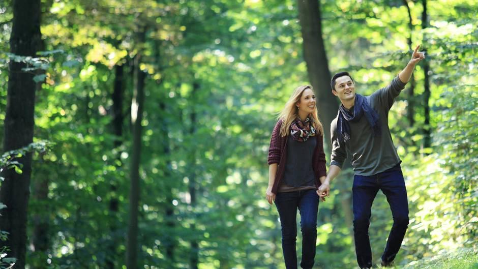 Teurer Spaziergang: Dieses Verhalten im Wald kann demnächst 50.000 Euro Strafe kosten